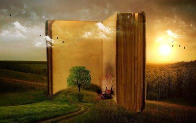 Appel à témoignage pour un livre